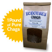 One Pound of Pure Minnesota Chaga